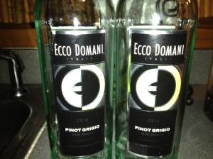 2010 Ecco Domani Pinot Grigio