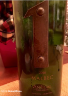 2008 Malbec 1, Antigal