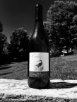 2013 Pinot Noir, Curlew Vineyards